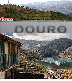 forum rencontre portugais