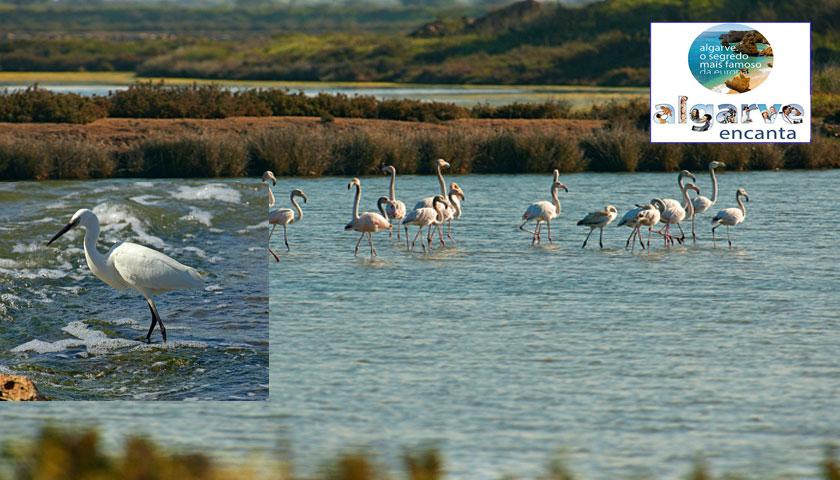 Algarve reforça Turismo de Natureza em Espanha