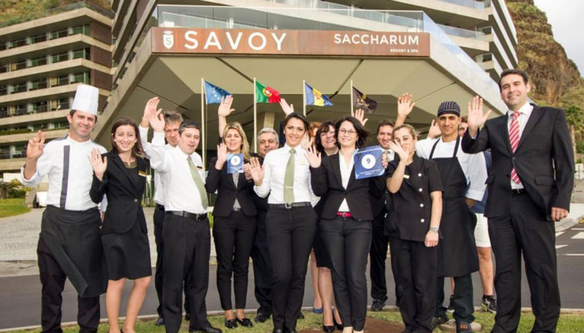 Savoy Saccharum distinguido