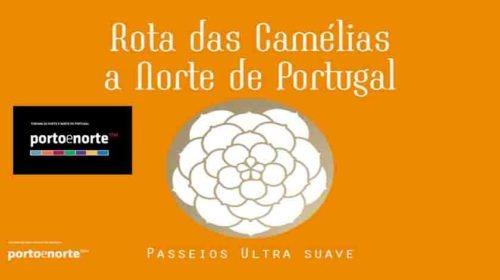 Porto e Norte têm uma nova e perfumada rota turística