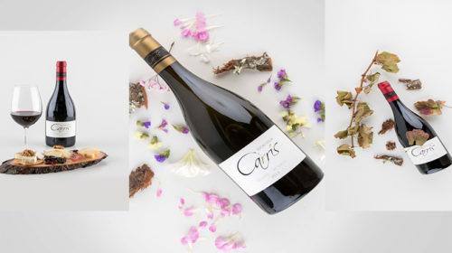Grupo Carrís Hoteles lança a sua própria marca de vinho